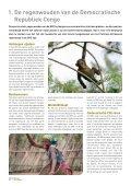 carving-up-the-congo-nederla - Greenpeace Nederland - Page 4