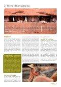 carving-up-the-congo-nederla - Greenpeace Nederland - Page 5