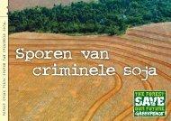 FOREST CRIME FILE: SPOREN VAN CRIMINELE SOJA.