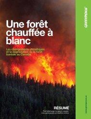 Une forêt chauffée à blanc. Les changements ... - Greenpeace