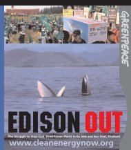 Edison Out of Bo Nok, Thailand - Greenpeace