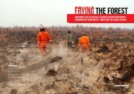 to download the report - Greenpeace
