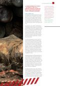 Le piLLage des forêts du congo - Greenpeace - Page 7