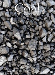 煤炭的真实成本 - Greenpeace