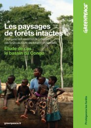 Les paysages de forêts intactes - Greenpeace