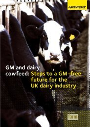 GM and dairy cowfeed: Steps to a GM-free future ... - GM Free Ireland