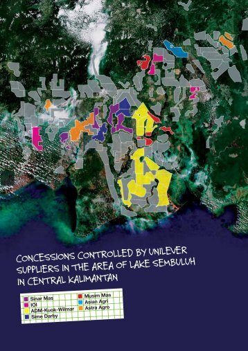 oil palm concessions in central kalimantan ... - Greenpeace UK