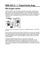 MNK GS1-2 – 1. Experimente Auge Wie Augen sehen
