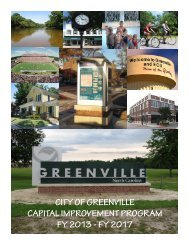 fy 2017 - City of Greenville