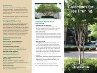 Guidelines for Tree Pruning - Greenville