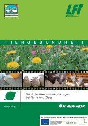 Stoffwechselerkrankungen bei Schaf und Ziege - Grenzlandschafe