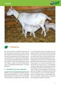 Eutergesundheit - Grenzlandschafe - Seite 3