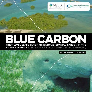 first level exploration of natural coastal carbon in the ... - GRID-Arendal