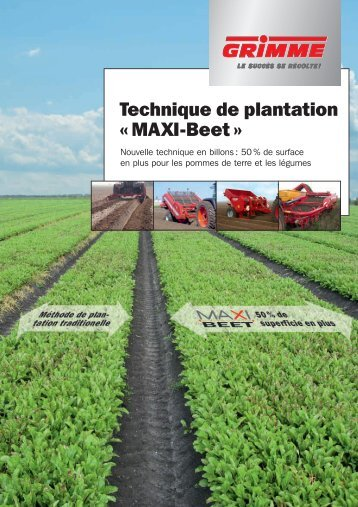 Technique de plantation « MAXI-Beet »