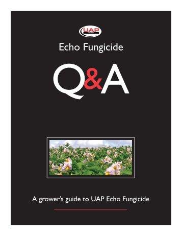 Echo Fungicide - Direct Solutions
