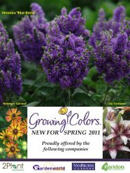 Growing Colors 2011 New Introductions