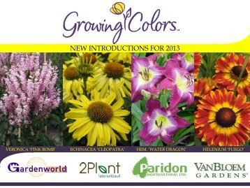 NEW INTRODUCTIONS FOR 2013 - Growing Colors