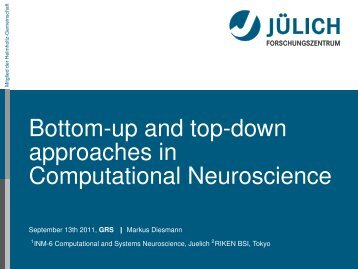 Bottom-up and top-down approaches in Computational Neuroscience