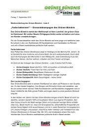 """""""Farbe bekennen!"""" – Grossratskampagne des Grünen Bündnis"""
