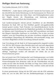 Heftiger Streit um Sanierung - Grünen in Wesseling