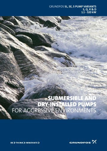 SubmerSible and dry-inStalled pumpS FOR ... - Grundfos
