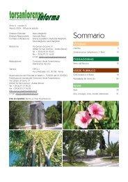 Agosto - Gruppo Torsanlorenzo
