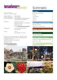 Aprile - Gruppo Torsanlorenzo
