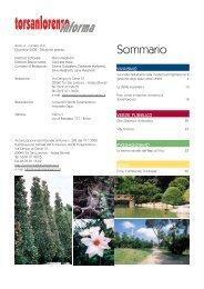 Dicembre - Gruppo Torsanlorenzo