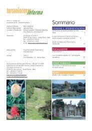 Novembre - Gruppo Torsanlorenzo
