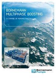 Multiphase Pumps & Systems - Bornemann Pumps