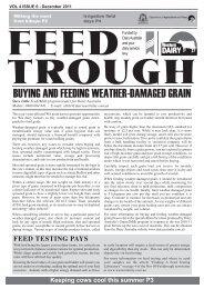 BUYING AND FEEDING WEATHER-DAMAGED GRAIN