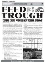 CEREAL CROPS PROVIDE NEW FODDER OPTIONS