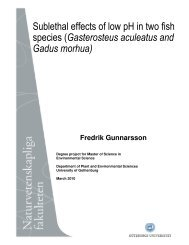 Sublethal effects of low pH in two fish species (Gasterosteus ...