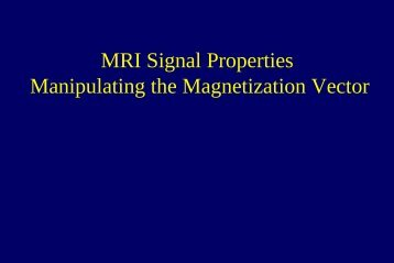 MRI Signal Properties Manipulating the Magnetization Vector