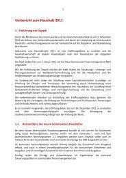 Vorbericht für den Haushalt 2011 - Guben
