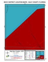 BOCC DISTRICT LOCATION MAPS - GULF COUNTY, FLORIDA 49A