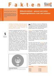 Das richtige Licht? (PDF 63 KB) - Guss