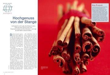 PDF laden - Gute Geschichten