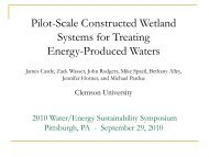 Pilot-Scale Constructed Wetland Systems for Treating Energy ...