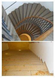 Die regelmäßige, gründliche Treppenreinigung führt erst nach ...
