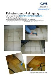 Feinsteinzeug-Reinigung - Gws-sawall.de