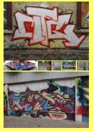 Professionelle, exakte Graffiti-Entfernung mit ... - Gws-sawall.de