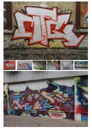 Graffiti-Entfernung professionell unter Verwendung ... - Gws-sawall.de