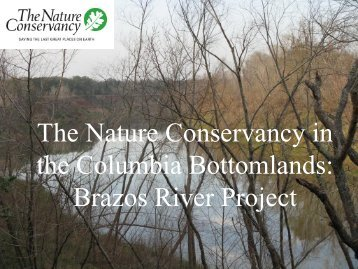 The Nature Conservancy in the Columbia Bottomlands: Brazos ...