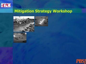 Mitigation Strategy Workshop