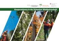 Kooperationen in der Schweizer Waldwirtschaft - HAFL - Berner ...