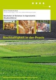 Studienführer Agronomie (pdf) - HAFL - Berner Fachhochschule