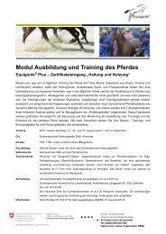 Modul Ausbildung und Training des Pferdes - HAFL