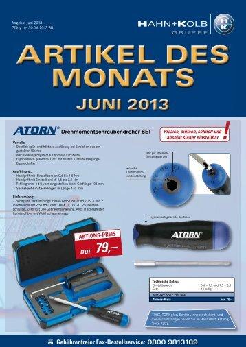 Artikel_Des_Monats_06/2103 - HAHN+KOLB Werkzeuge GmbH