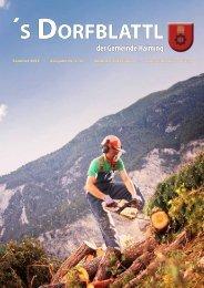 Dorfblattl Sommer 2012 (5,03 MB) - Gemeinde Haiming - Land Tirol